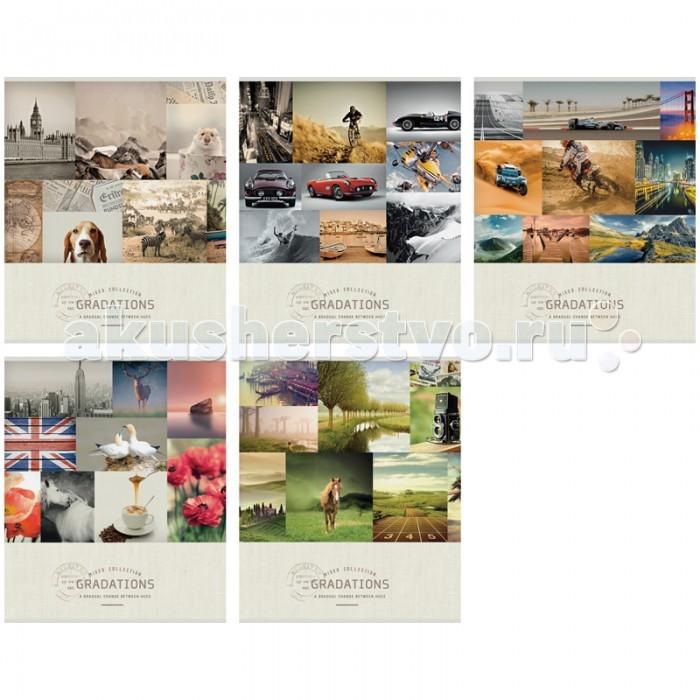 Тетради Спейс Тетрадь А5 линия Стиль Mixed collection (48 листов) делай 100 листов а5