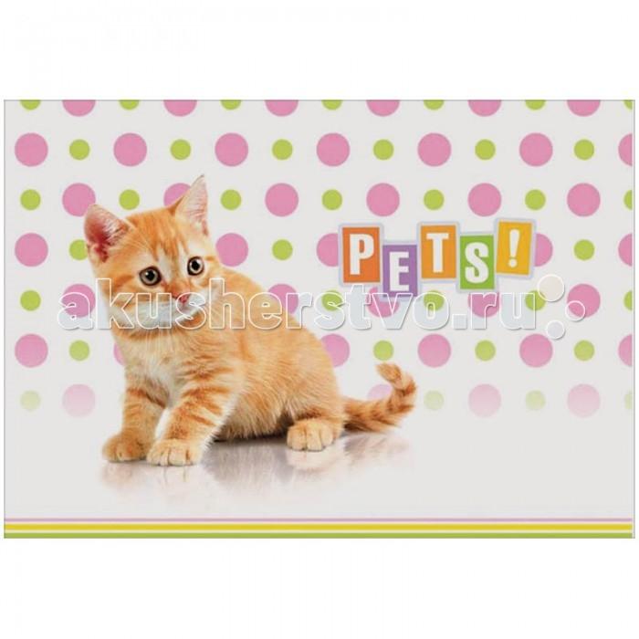 Принадлежности для рисования Спейс Альбом для рисования Питомцы. Pets! 12 листов картридж для принтера и мфу panasonic kx faty508a7 yellow
