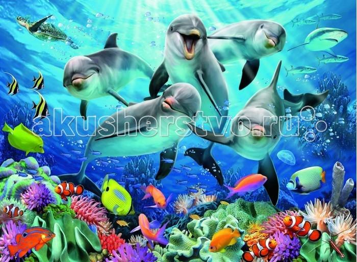Пазлы Ravensburger Пазл Дельфины 500 элементов наклейка для интерьера дельфины