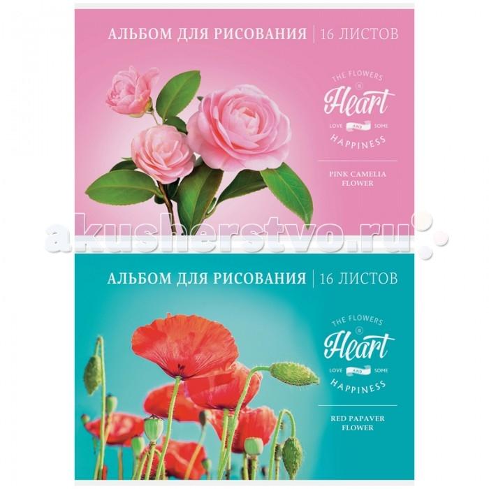 Принадлежности для рисования Спейс Альбом для рисования Цветы. Love & happiness 16 листов спейс альбом для рисования животные another part 24 листа