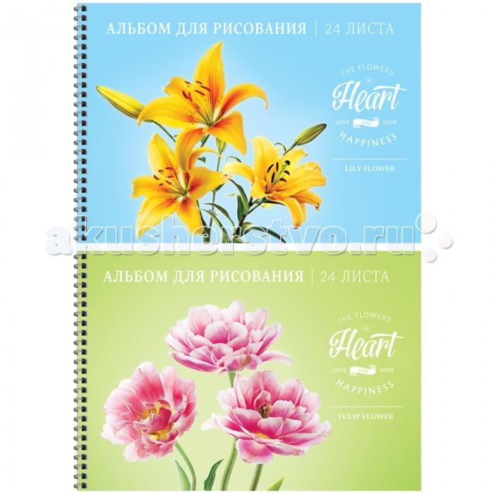 Принадлежности для рисования Спейс Альбом для рисования Цветы Love & happiness 24 листа спейс альбом для рисования животные another part 24 листа