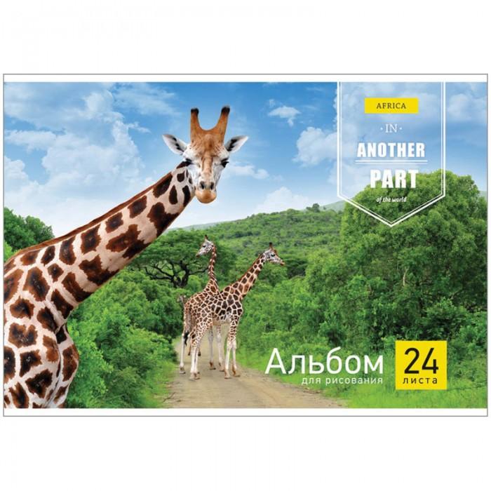Принадлежности для рисования Спейс Альбом для рисования Животные Another part 24 листа животные антистресс альбом