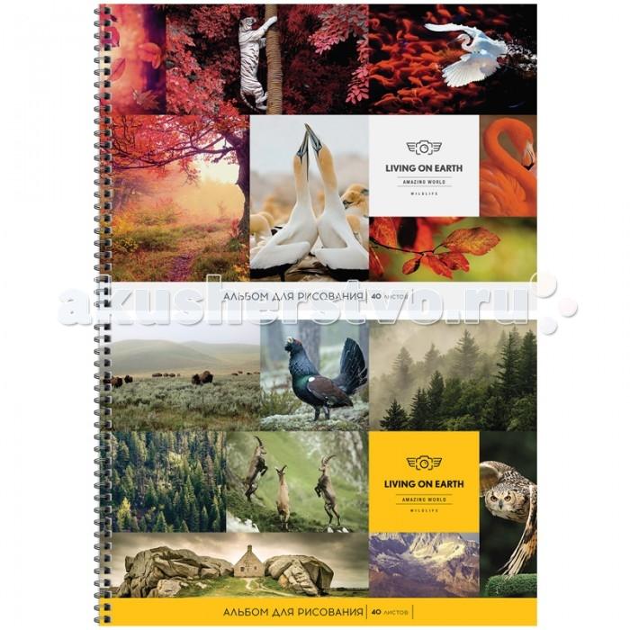 Принадлежности для рисования Спейс Альбом для рисования Природа Living on earth 40 листов альбом планшет для профессионального рисования европа 50 листов гребень с1726 04