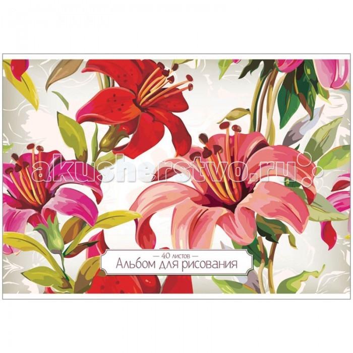 Принадлежности для рисования Спейс Альбом для рисования Цветы Charm floral 40 листов pair of gorgeous rhinestone geometric earrings jewelry for women