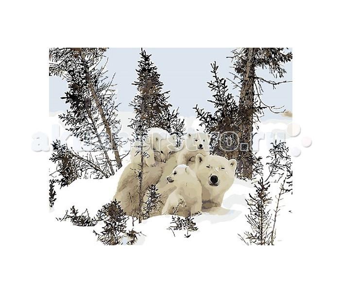 картины по номерам molly картина по номерам л афремов собор парижской богоматери Картины по номерам Molly Картина по номерам Белые медведи