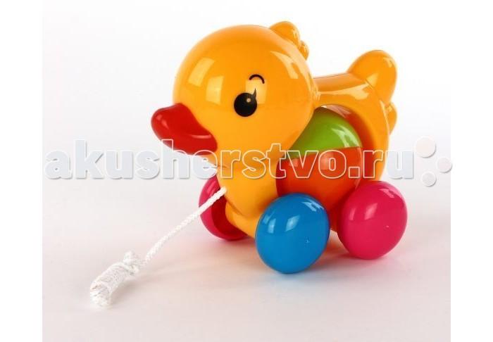 Каталки-игрушки Shantou Gepai Дружок shantou gepai игрушка пластмассовая компьютер твой помощник shantou gepai