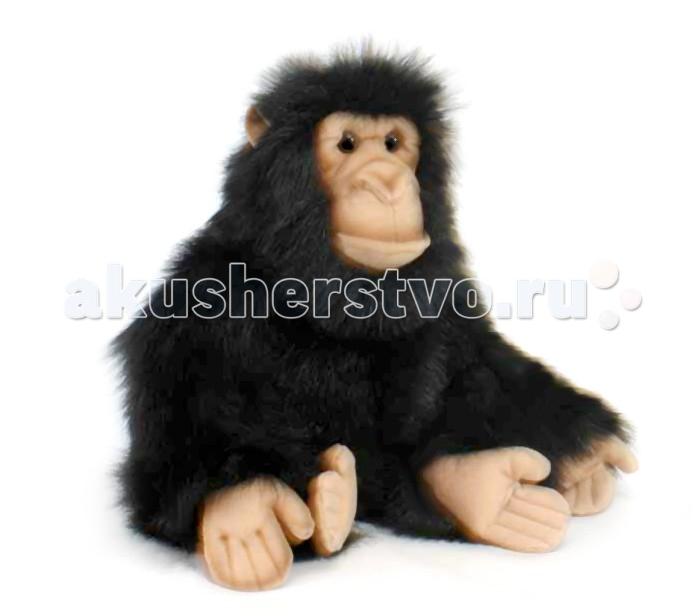 Мягкая игрушка Hansa Шимпанзе 25 смШимпанзе 25 смHansa Шимпанзе 25 см  Торговая марка Hansa стала широко известной и популярной практически во всем мире и получила множество международных призов Игрушки максимально точно копируют оригинал и могут быть выполнены в натуральную величину Шьются и набиваются вручную, что позволяет достигнуть максимальной реалистичности образа Изготавливаются из искусственного меха, специально обработанного для придания схожести с мехом конкретного вида животного Снабжены проволочным каркасом При помощи игрушек Hansa можно создавать различные интерьерные образы в детских, студиях и живых уголках.<br>