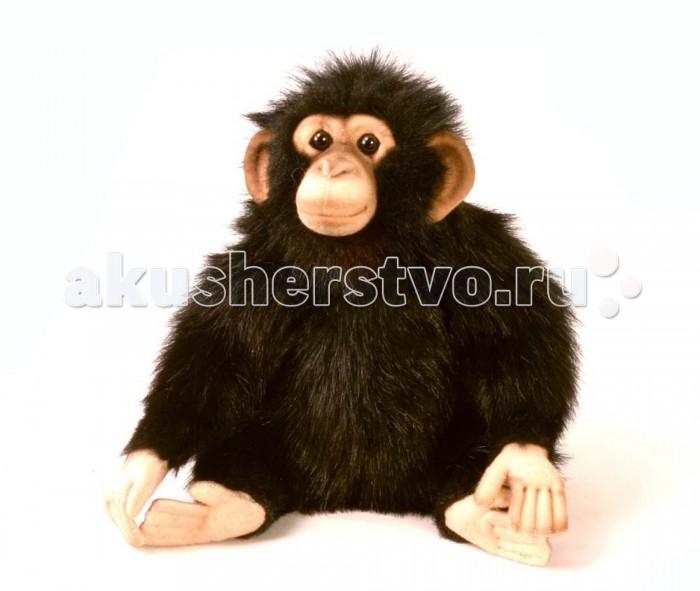 Мягкая игрушка Hansa Шимпанзе 24 смШимпанзе 24 смHansa Шимпанзе 24 см  Торговая марка Hansa стала широко известной и популярной практически во всем мире и получила множество международных призов Игрушки максимально точно копируют оригинал и могут быть выполнены в натуральную величину Шьются и набиваются вручную, что позволяет достигнуть максимальной реалистичности образа Изготавливаются из искусственного меха, специально обработанного для придания схожести с мехом конкретного вида животного Снабжены проволочным каркасом При помощи игрушек Hansa можно создавать различные интерьерные образы в детских, студиях и живых уголках.<br>