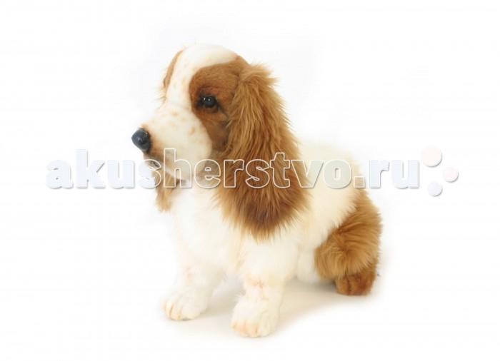 Мягкие игрушки Hansa Кокер-Спаниель 28 см собака кокер спаниель в туле