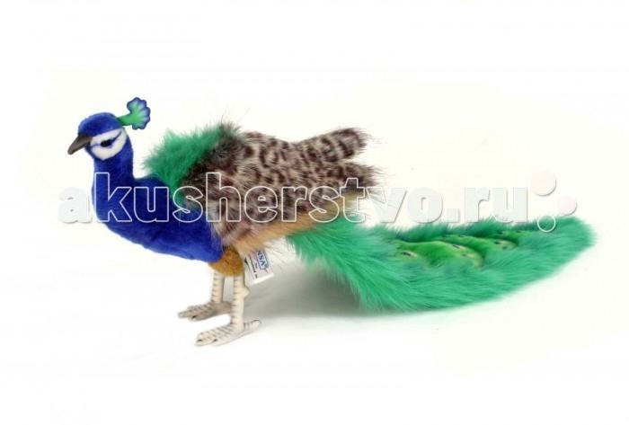Купить Мягкие игрушки, Мягкая игрушка Hansa Павлин 24 см