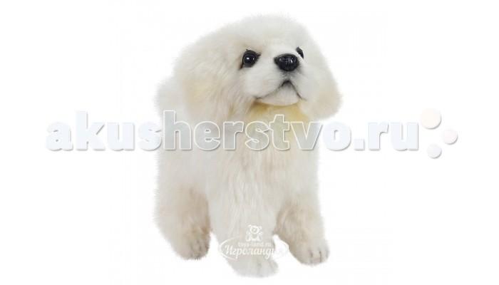 Мягкие игрушки Hansa Щенок Мареммано-Абруццкой овчарки стоящий 17 см куплю щенка немецуой овчарки в севастополь
