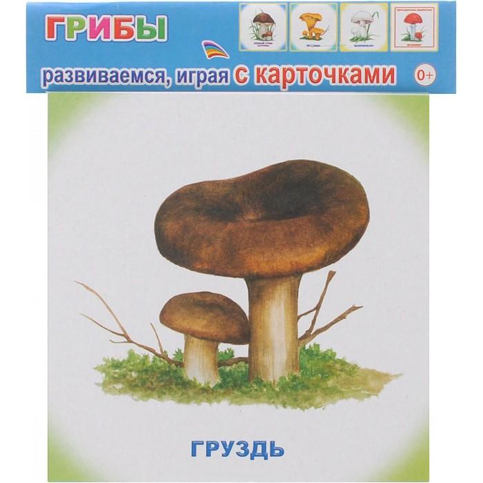 Обучающие плакаты Алфея Обучающие карточки Грибы улыбка обучающие карточки игрушки