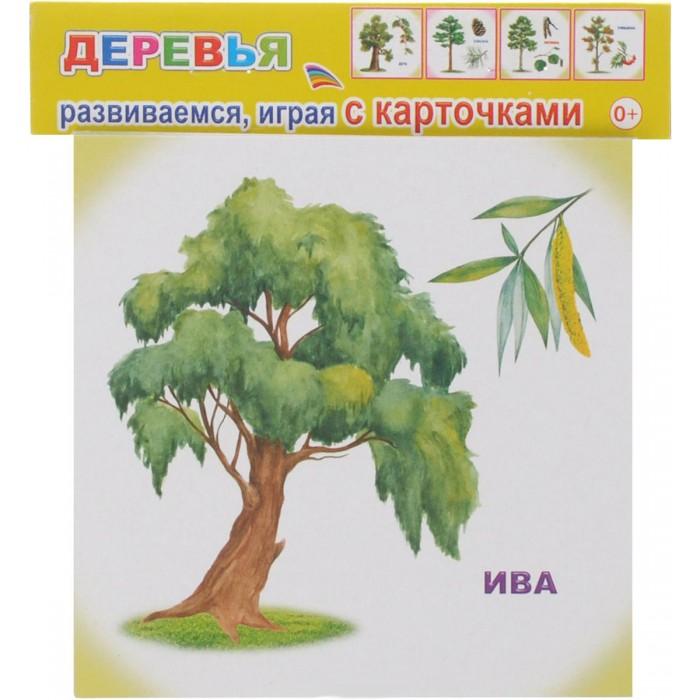 Обучающие плакаты Алфея Обучающие карточки Деревья улыбка обучающие карточки игрушки