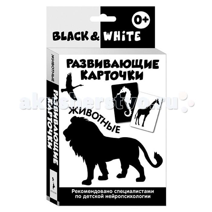 Раннее развитие Росмэн Развивающие карточки Black & White Животные раннее развитие росмэн развивающие карточки учимся читать