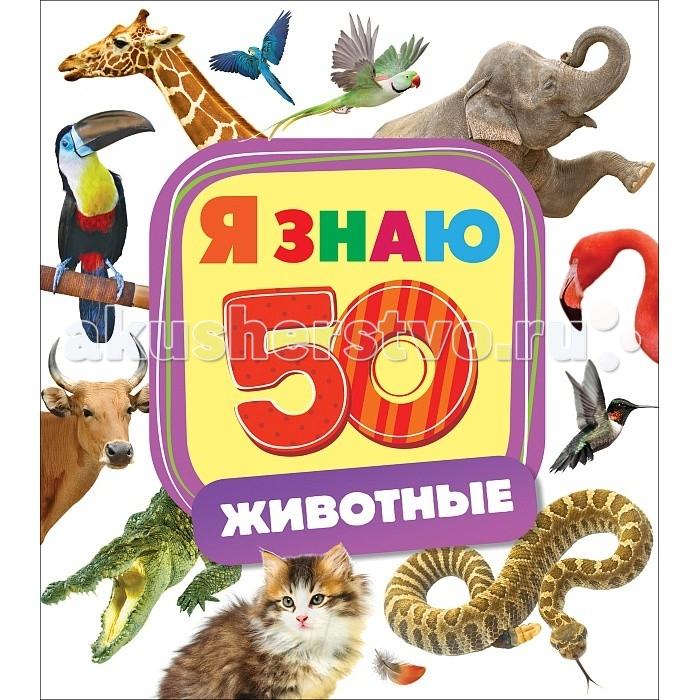Книжки-картонки Росмэн Книжка-картонка Животные книжки картонки росмэн книжка картонка загадки про машины