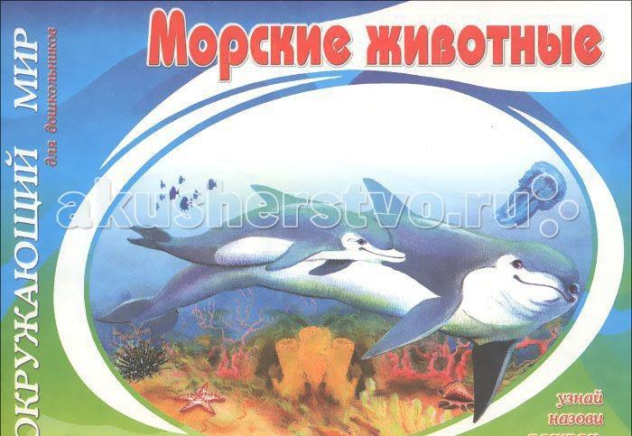 Раскраски ДетИздат Окружающий мир Морские животные спецмашины