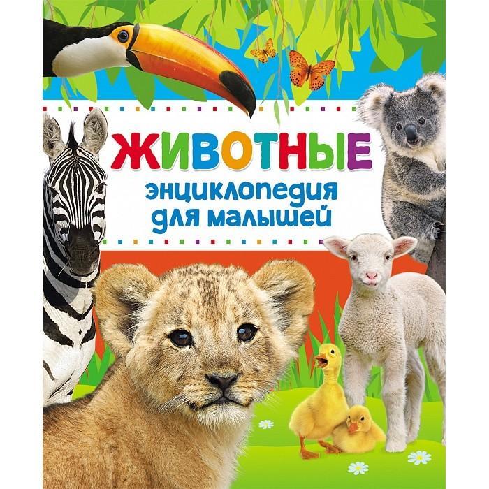 Энциклопедии Росмэн Энциклопедия животных для малышей о животных