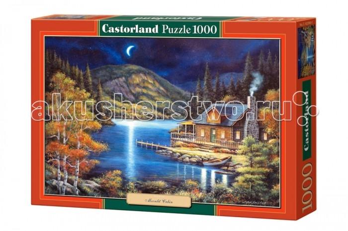 Пазлы Castorland Пазл Лунный свет 1000 элементов пазлы magic pazle объемный 3d пазл эйфелева башня 78x38x35 см