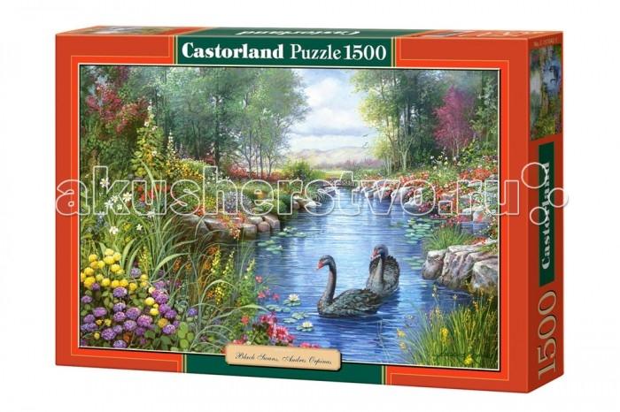 Пазлы Castorland Пазл Черные лебеди 1500 элементов паззл castorland 1500 эл 68 47см сова
