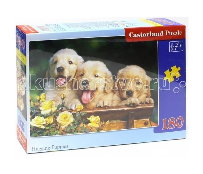 Пазлы Castorland Пазл Три щенка 180 элементов пазлы castorland пазл 4 в 1 девочка и лошадь 180 элементов
