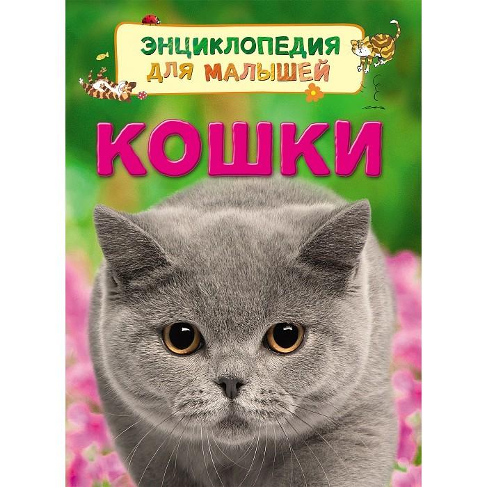 Энциклопедии Росмэн Энциклопедия для малышей Кошки