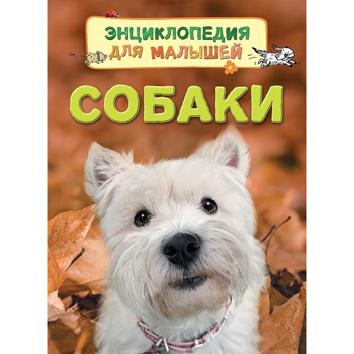 Энциклопедии Росмэн Энциклопедия для малышей Собаки как билет для собаки на экспресс