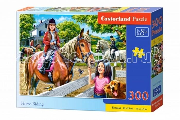 Пазлы Castorland Пазл Верховая езда 300 элементов пазлы castorland пазл храм в санкт петербурге 500 элементов