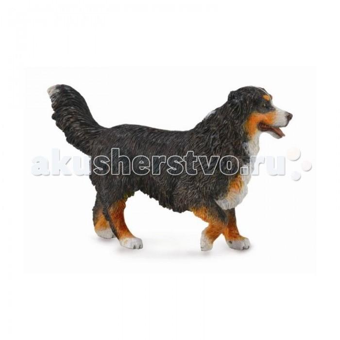 Купить Gulliver Собака Бернский зенненхунд L в интернет магазине. Цены, фото, описания, характеристики, отзывы, обзоры