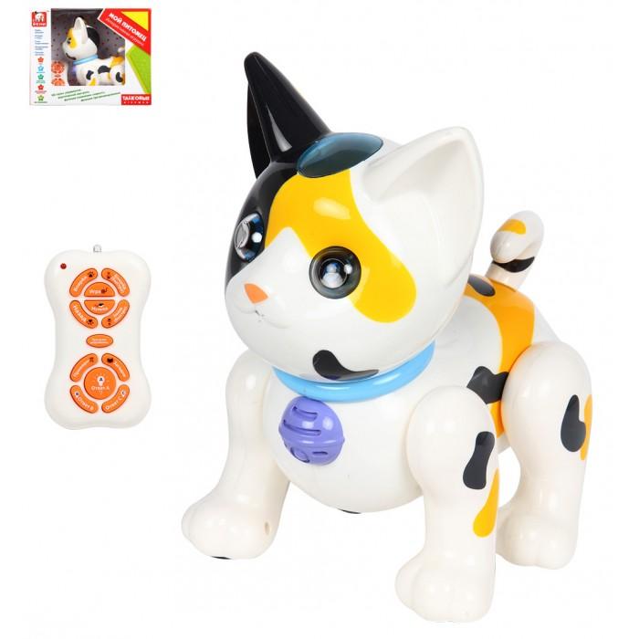 Интерактивные игрушки S+S Toys Кот с пультом управления на батарейках каталка на палочке s s toys вертолет желтый от 1 года пластик