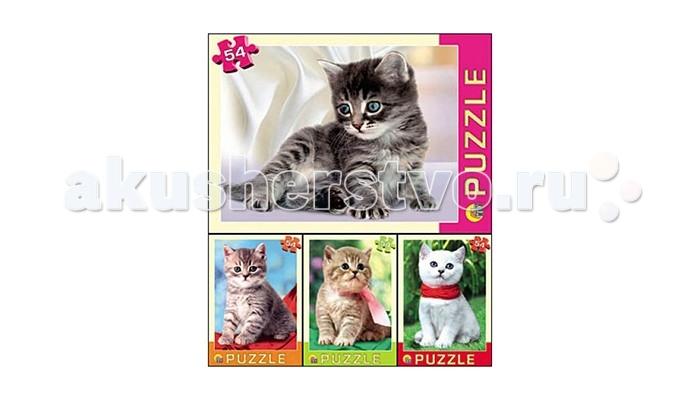 Пазлы Рыжий кот Пазл Котята 54 элементов пазлы бомик пазлы книжка репка