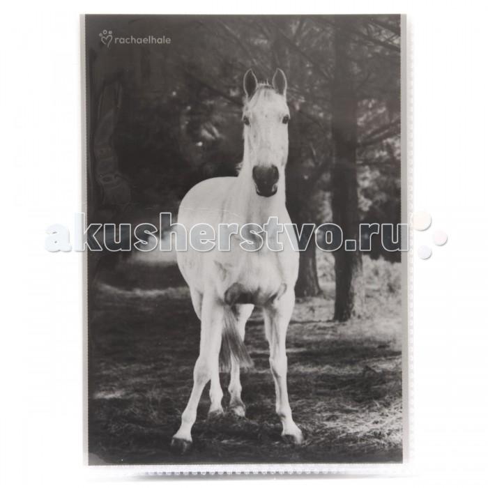 Фотоальбомы и рамки Veld CO Фотоальбом 36 фотографий 10х15 см 46819 подарочная упаковка veld co бант шар 10 шт в наборе
