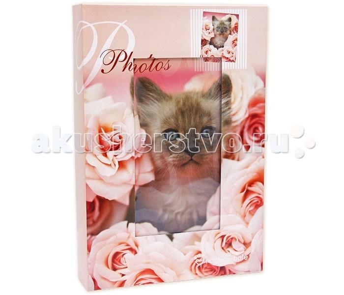 цены  Фотоальбомы и рамки Veld CO Фотоальбом в кейсе 300 фотографий 10х15 см 46435