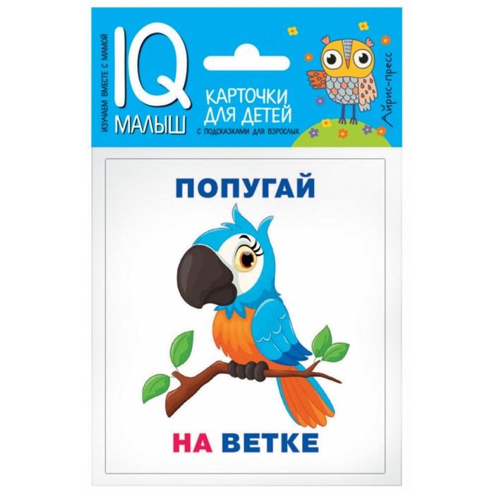 Раннее развитие Айрис-пресс Обучающие карточки Умный малыш Кто где находится? набор для игры карточная айрис пресс iq карточки развиваем мышление 25624