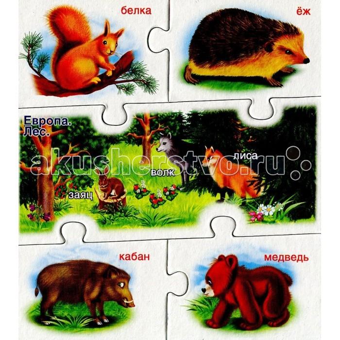 Раннее развитие Русский стиль Умные игры Мир Животных
