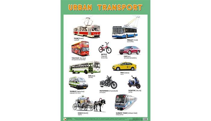 Обучающие плакаты Мозаика-Синтез Обучающий плакат URBAN TRANSPORT Городской транспорт