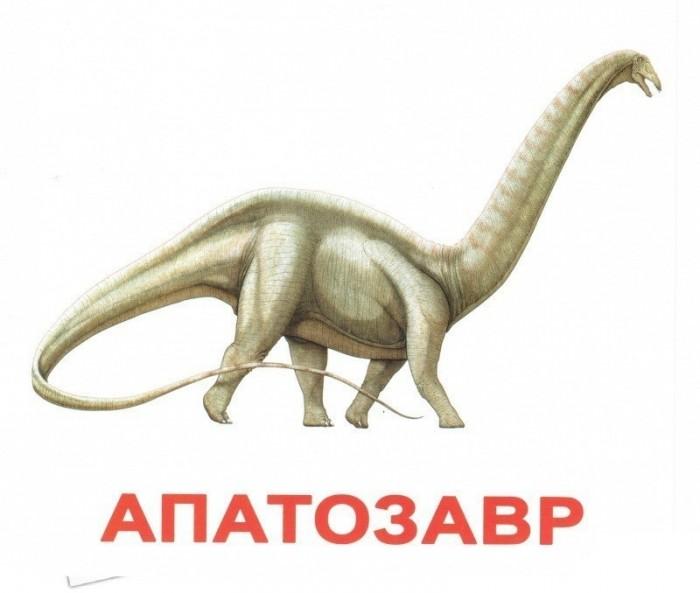 Раннее развитие Вундеркинд с пелёнок Обучающие карточки Динозавры 20 шт. вундеркинд с пелёнок развивающее лото животные