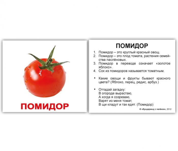 Раннее развитие Вундеркинд с пелёнок Обучающие карточки Мини-овощи с фактами 40 шт. вундеркинд с пелёнок развивающее лото животные