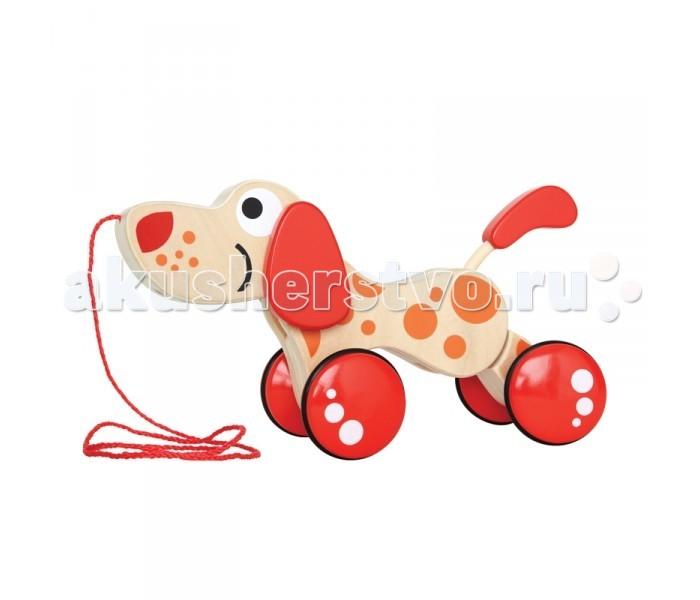 Каталка-игрушка Hape Щенок Е0347