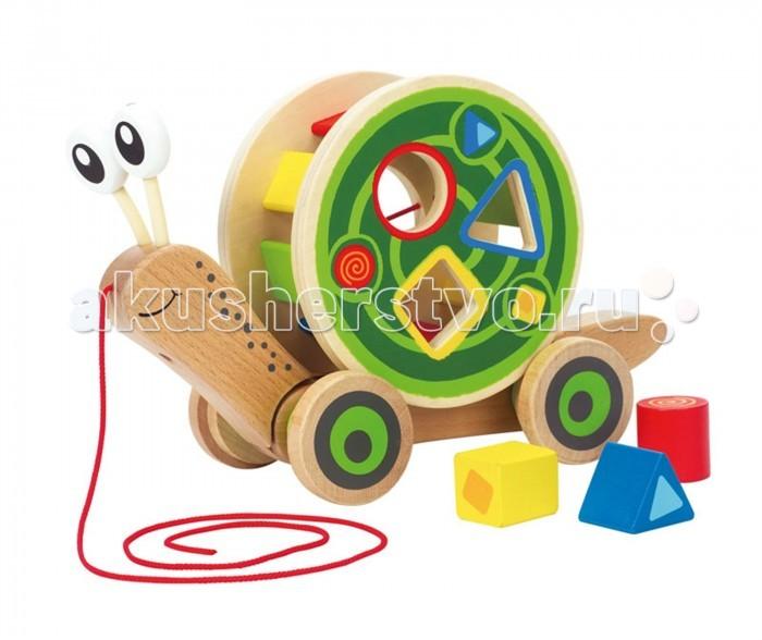 Фото - Каталки-игрушки Hape Каталка-сортер Улитка Е0349 plantoys сортер каталка plan toys автобус