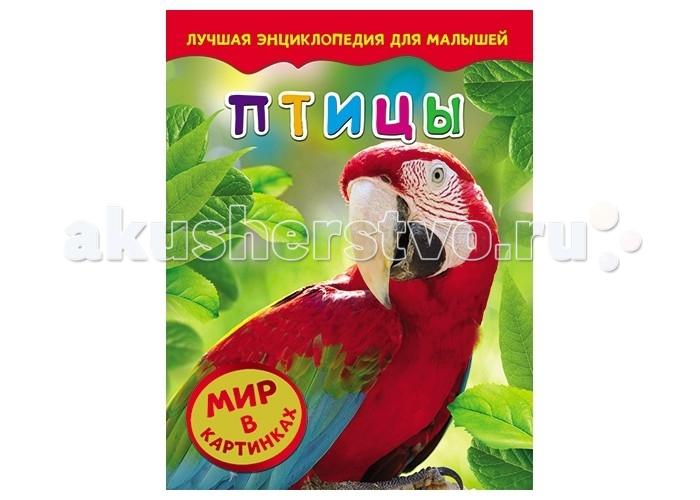 Энциклопедии Росмэн Самая первая энциклопедия Птицы