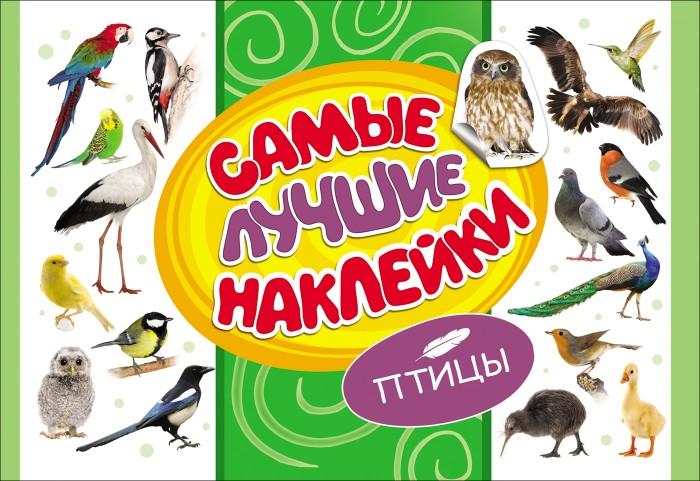 Книжки с наклейками Росмэн Самые лучшие наклейки Птицы росмэн росмэн самые лучшие наклейки птицы