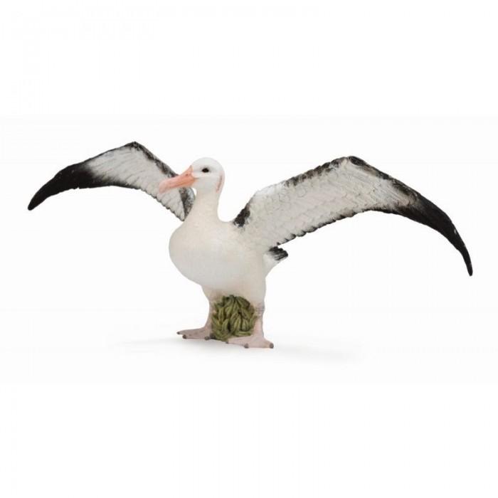 Фото - Игровые фигурки Collecta Странствующий альбатрос L игровые фигурки collecta карликовый бегемот l