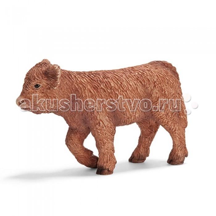 Игровые фигурки Schleich Игровая фигурка Северо-шотландский теленок игровые фигурки schleich игровая фигурка северо шотландская корова