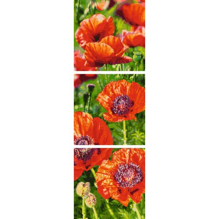 Картины по номерам Schipper Картина по номерам Триптих Маки 120х40 см