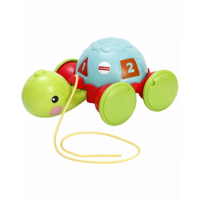 Каталки-игрушки Fisher Price Обучающая черепашка на колесиках