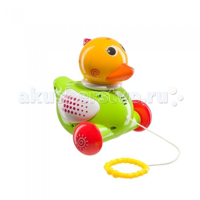 Каталка-игрушка Happy Baby Ducky 331246