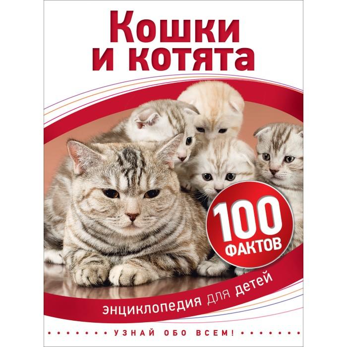 Энциклопедии Росмэн Энциклопедия Кошки и котята (100 фактов) полуперсидские котята в москве