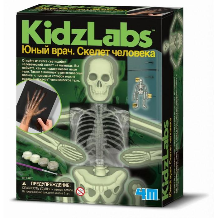 Наборы для творчества 4М Юный врач. Скелет человека 4m скелет мамонта 4м