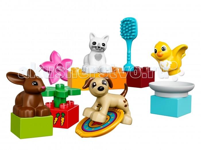 Lego Lego Duplo Домашние животные конструкторы clever мой маленький конструктор тетрадь домашние животные