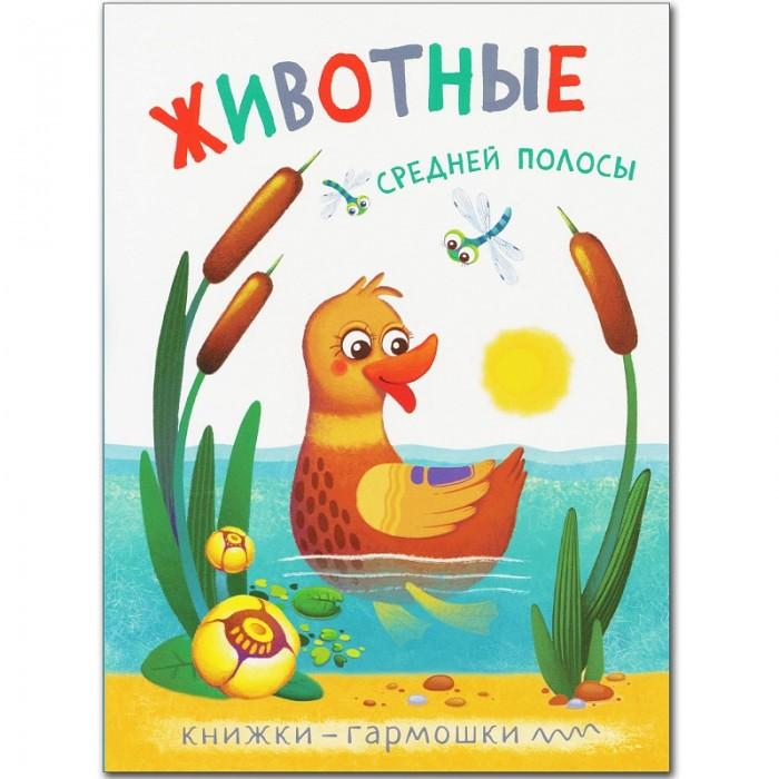 Книжки-игрушки Мозаика-Синтез Книжка-гармошка Животные средней полосы книжки игрушки мозаика синтез книжка забавные зверушки жираф